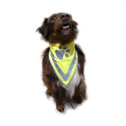 Reflexscarf Hund